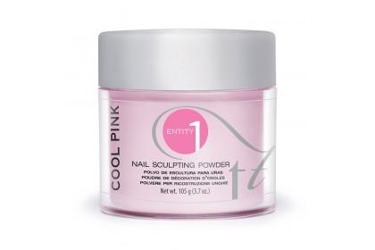 Entity Sculpting Powder 105g # Nudit E - Cool Pink